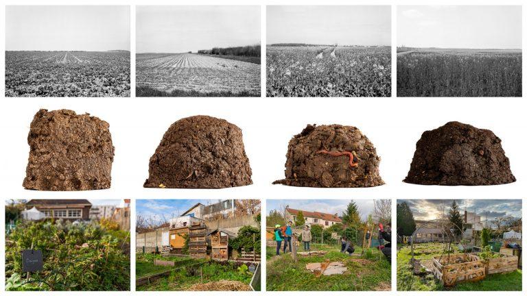 «Terre nourricière» – Guillaume Clothilde